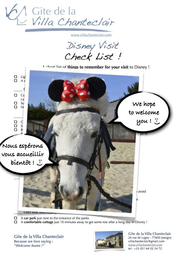 Notre check list Disney : le must have avant toute visite des parcs !
